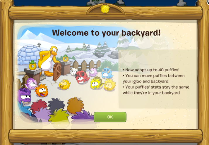 club penguin backyard info